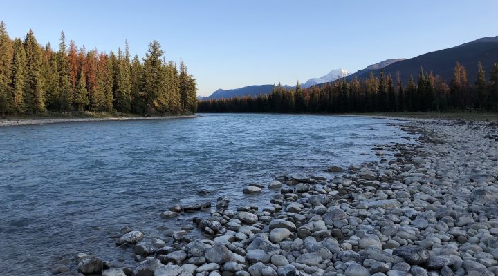 VIDÉO | On explore le Parc national de Jasper